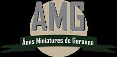 cropped-Logo-AMG-2016-12-06.png